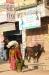 1-daman-to-janakpur32