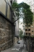 5-trees-hk23