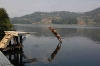 3-equator-lake-bunyonyi33