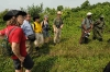 2-vulcano-hikes22