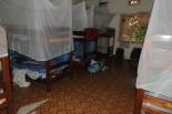 """Wake up, Martin, wake up!!!!!!!!!"", Kampala Jan 29th, 2011"